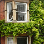 Sash windows in Woodford Green